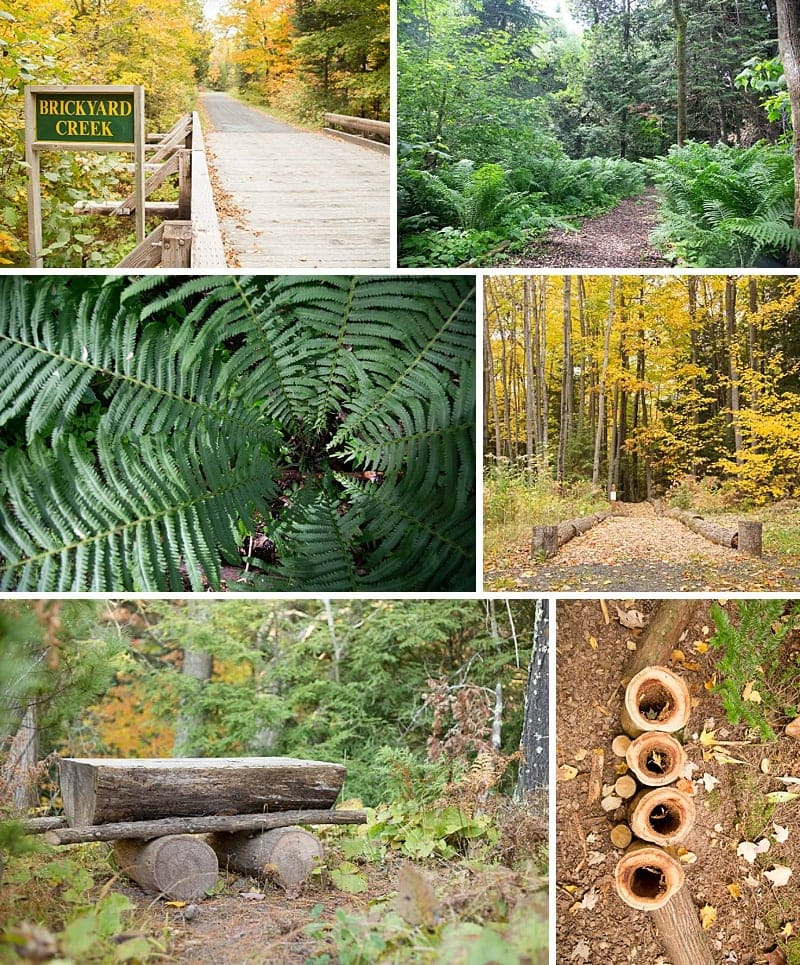 THE BEST Places To Hike In Bayfield: 10 Wisconsin Trails in Bayfield County that make for a perfect adventure #bayfieldwi #hiking *Great list