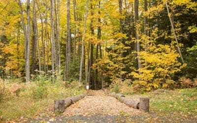 10 Unique Places To Hike In Bayfield