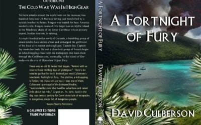 A Fortnight of Fury, The Third Novel from BYC Developer David Culberson