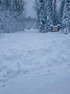 Winter 2019 Storm