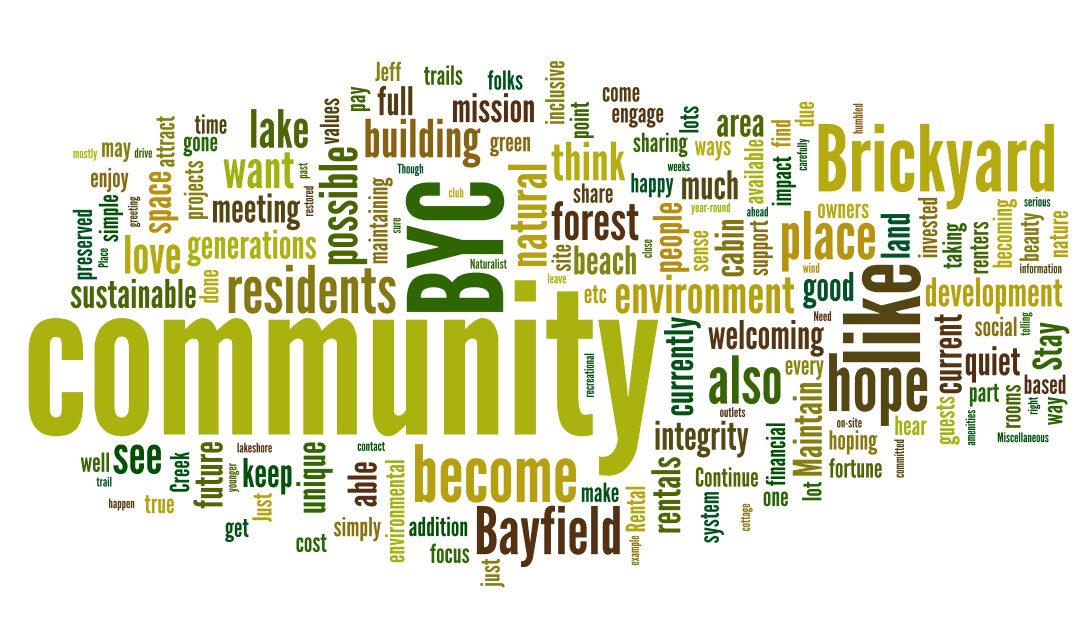 Brickyard Creek Community Survey – Summer 2020